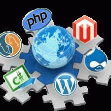 Tvorba web stránok u profesionálov
